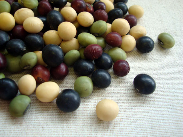 小さくてかわいいのに、栄養たっぷり!いろんな豆の種類のレシピ♡のサムネイル画像