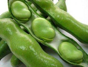 こんなにおいしいそら豆の、基礎知識と絶品の食べ方をご紹介のサムネイル画像