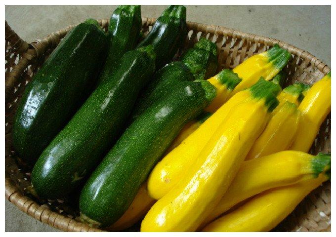 人気急上昇!夏野菜ズッキーニのおいしい人気レシピをご紹介のサムネイル画像