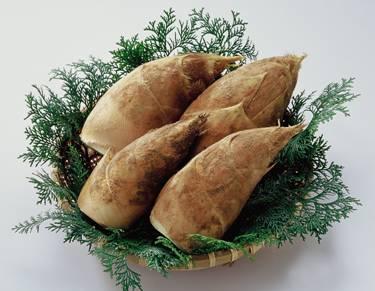 メインレシピからおかずまで幅広く活用しよう!竹の子レシピ特集のサムネイル画像