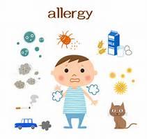 アレルギーなんて怖くない。美味しいスイーツをおうちで作ろう。のサムネイル画像
