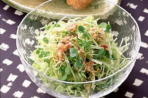 ビタミンたっぷり!オシャレで美味しいキャベツサラダのレシピのサムネイル画像