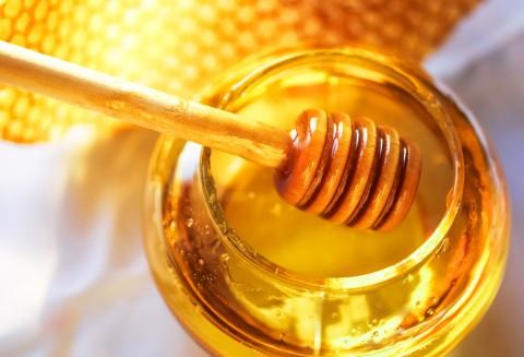 健康に良いと言われる「蜂蜜」  蜂蜜には驚くべき効能があった!?のサムネイル画像