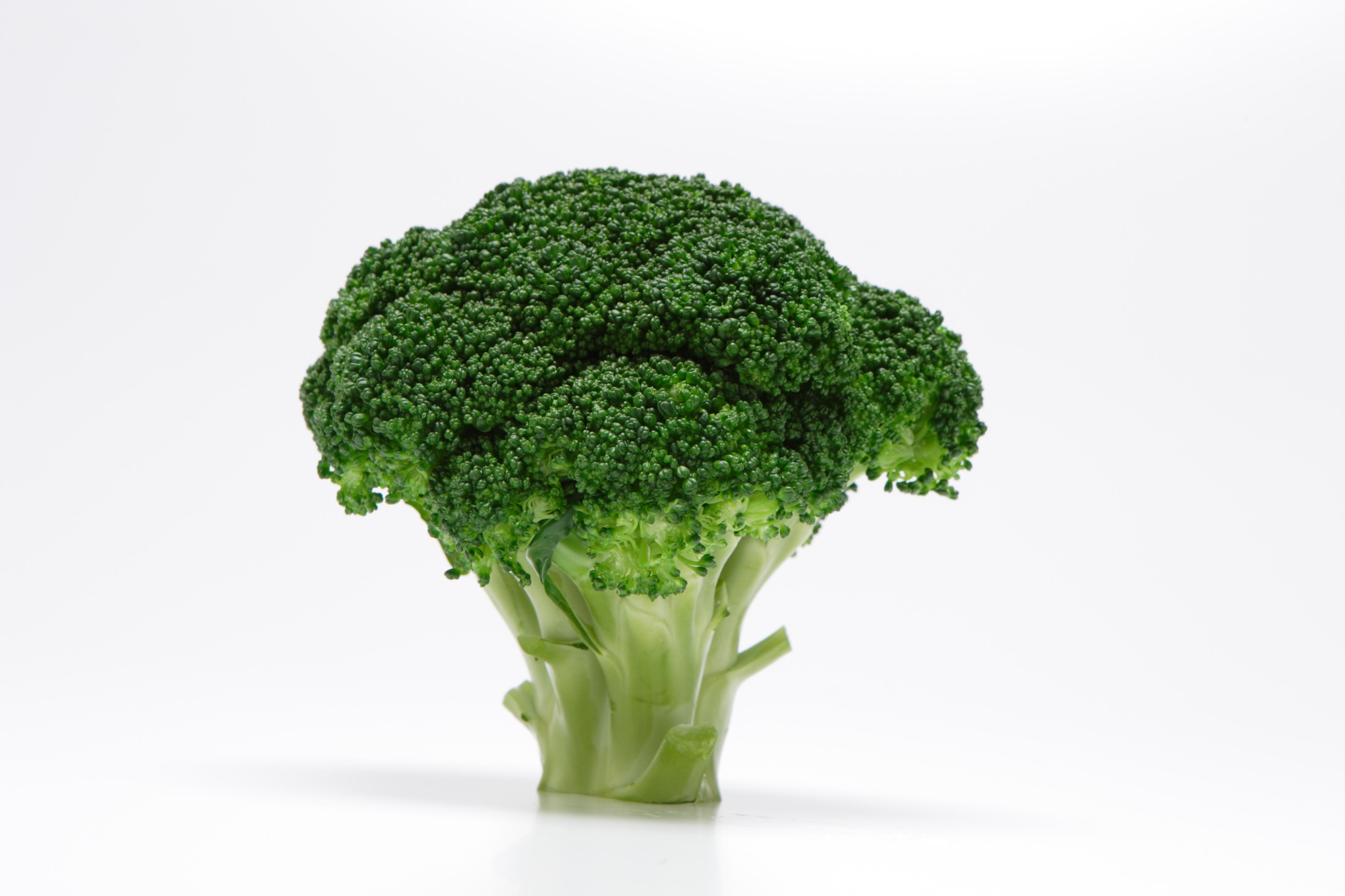 栄養満点!ブロッコリーのおいしい茹で方とは?保存法も解明します!のサムネイル画像
