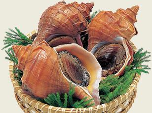 噛むほど旨みが出てくる!つぶ貝を使ったおすすめレシピ5選!のサムネイル画像
