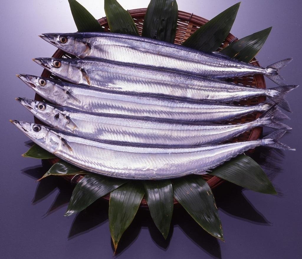 秋が旬!おかずに最適!脂の乗った美味しい秋刀魚のレシピ5選のサムネイル画像