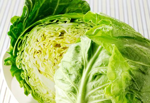 キャベツの常備菜レシピ、毎日の献立作りの頼もしい味方になるのサムネイル画像