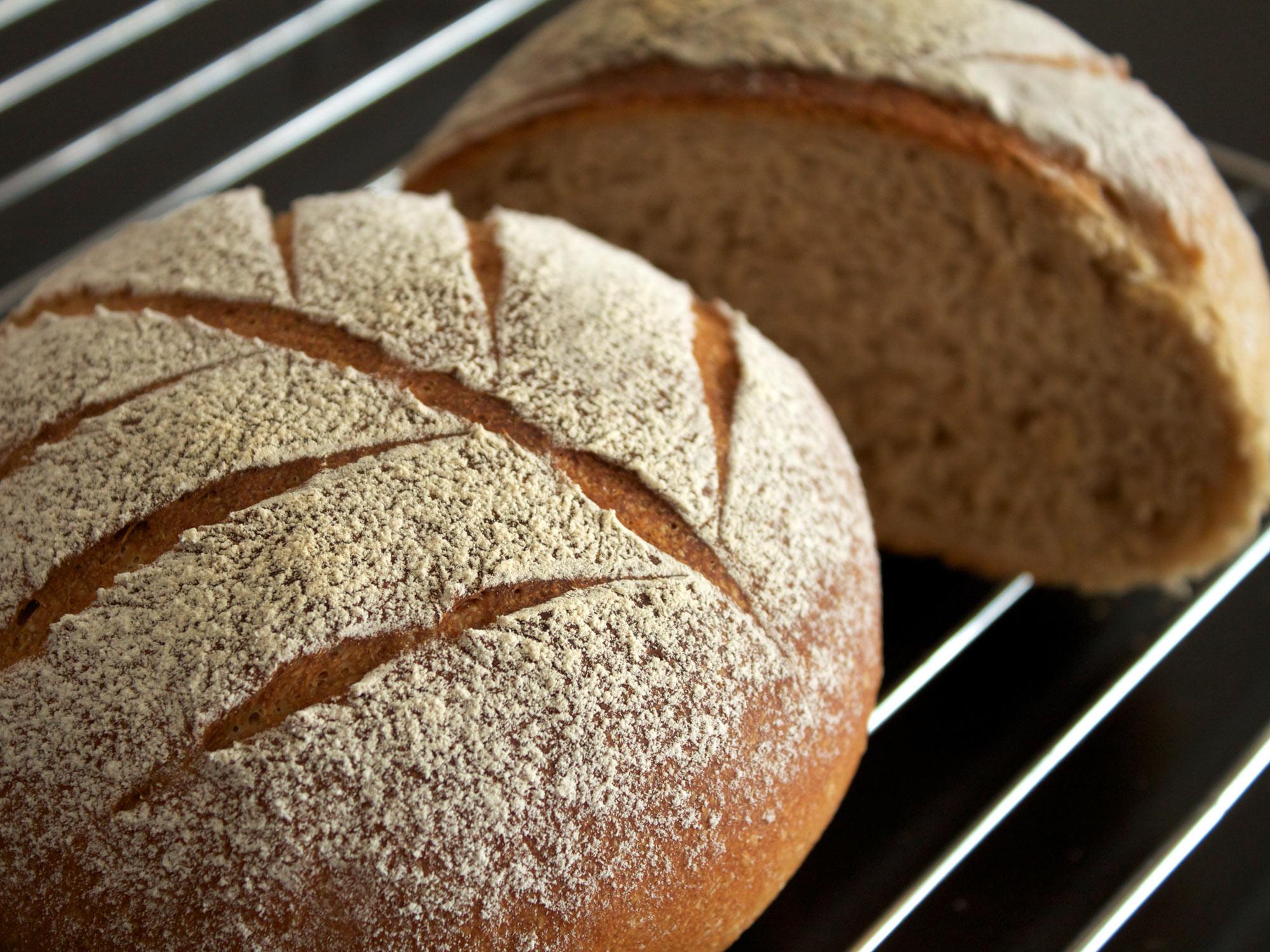 栄養価が高く、麦の旨みを味わえるライ麦パンのおすすめレシピ5選のサムネイル画像